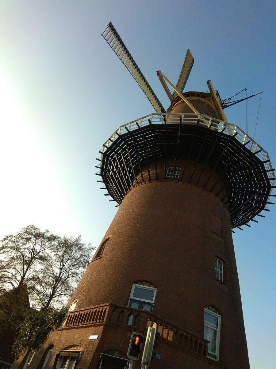Štúdium v Holandsku, kurzy holandčiny