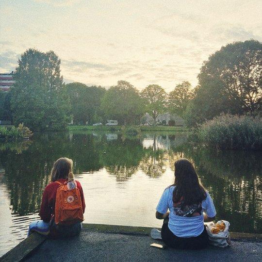 Ako som sa dostala k štúdiu v Holandsku