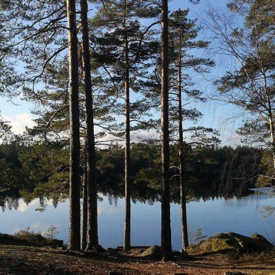 Stredná škola vo Švédsku: laptop pre každého, tma a krásna príroda